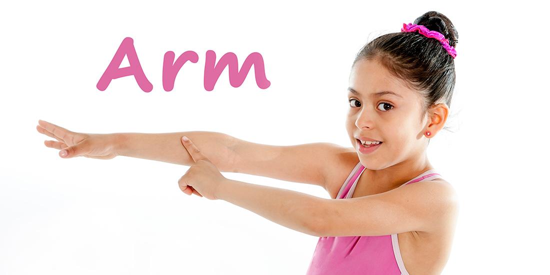partes del cuerpo en ingles para niños - tet education